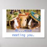 Guinea Pig Acquaintances Posters