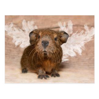 Guinea Pig Angel Postcard