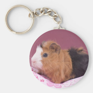 guinea pig basic round button key ring