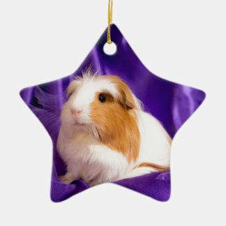 guinea pig ceramic star decoration