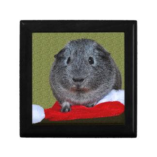 Guinea Pig Christmas Gift Box