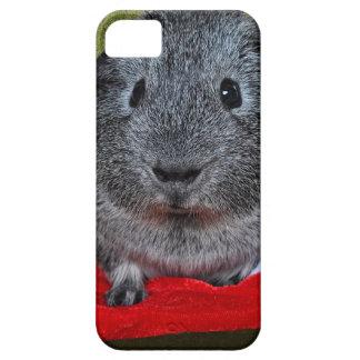 Guinea Pig Christmas iPhone 5 Case
