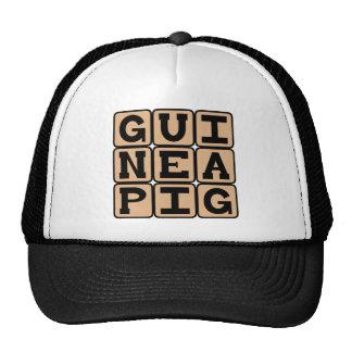Guinea Pig, Cute Pet or Test Subject Cap