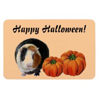 Guinea Pig Halloween Magnet
