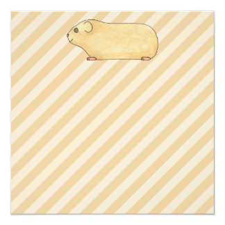Guinea Pig. Personalized Announcement