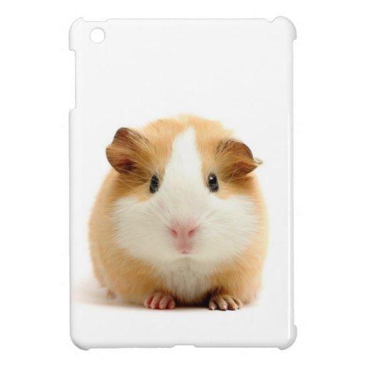 guinea pig iPad mini covers