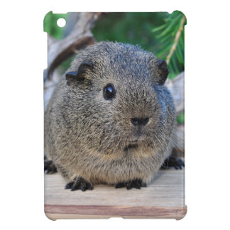 Guinea Pig iPad Mini Cases
