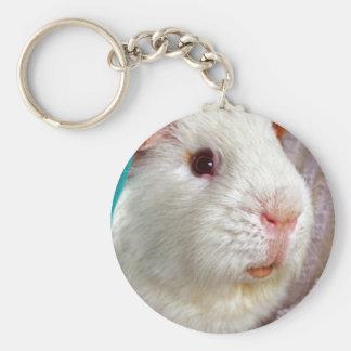 guinea pig key ring basic round button key ring