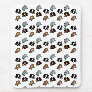 Guinea Pig line up Mouse Pad