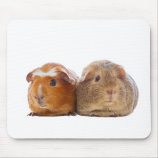 Guinea Pig Mouse Pad