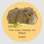 Guinea Pig Round Stickers