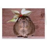 Guinea Pig Sweetheart Greeting Card