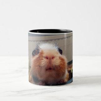 Guinea pig urines mug