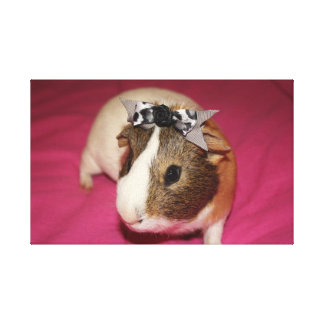 Guinea Pig With Bow 2 Canvas Prints