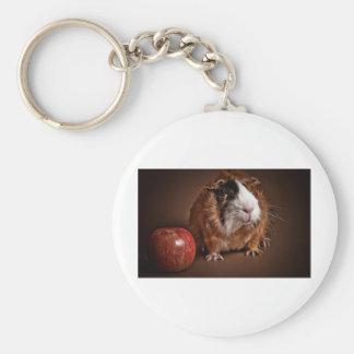 guinea pigs keychain