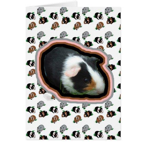 Guinea Pigs Note Card