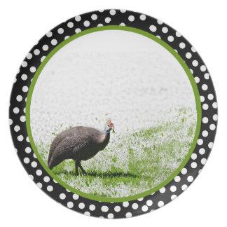 Guineafowl plate