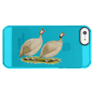 Guineas Buff Dundotte Fowl Clear iPhone SE/5/5s Case