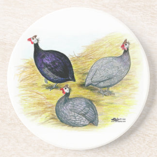 Guineas Purple, Coral Blue and Lavender Coaster
