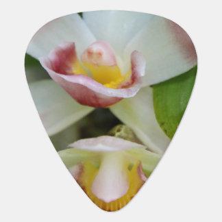 Guitar Pick - Fan Shaped Orchid