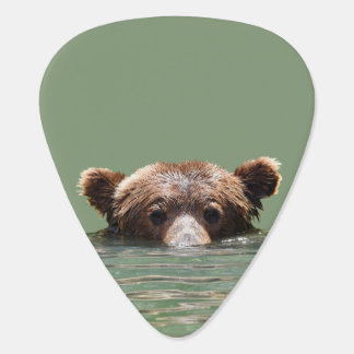 Guitar pick w/ grizzly bear and cubs