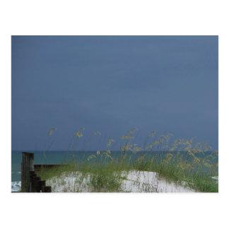 Gulf beach scene postcard