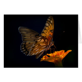 Gulf Fritillary Butterfly Note Card