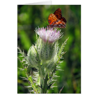 Gulf Fritillary Greeting Card (3306)