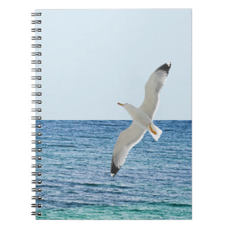 Gull flying above a sea notebook