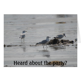 Gull Party, Heard about the party? Card