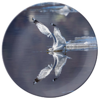 Gull Reflections Plate