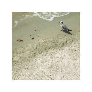 Gull Stretched Canvas Print