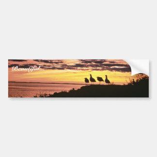Gulls At Sunset Bumper Stickers