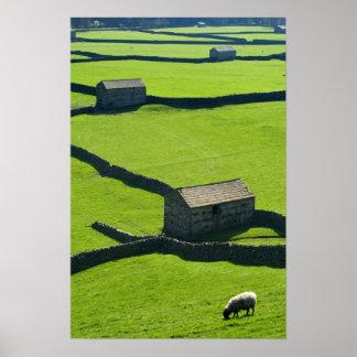 Gunnerside, Yorkshire Dales poster