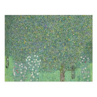 Gustav Klimt - Rosebushes under the Trees Postcard