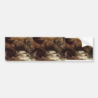 Gustave Courbet: The Source of the Loue Bumper Sticker