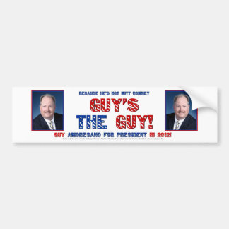 Guy not Mitt in 2012 Bumper Stickers