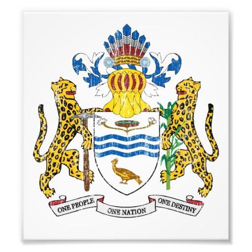 Guyana Coat Of Arms Art Photo