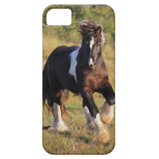 Gypsy Cob Case For The iPhone 5