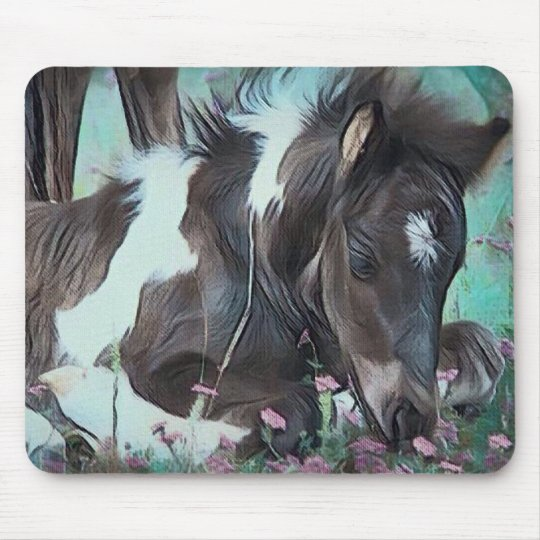 Gypsy Cob Foal Mouse Pad