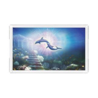 H019 Nori Dolphins Acrylic Tray
