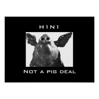 H1N1 - Not a Pig deal Poster
