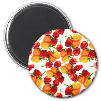 Habanero Chilies Red Peppers Orange Hot Food Magnet