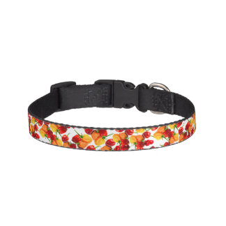 Habanero Chilies Red Peppers Orange Hot Food Pet Collar