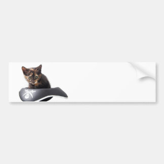 Hacker Kitten Bumper Stickers