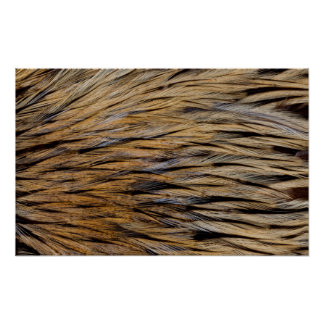 Hackle Feather Abstract Poster