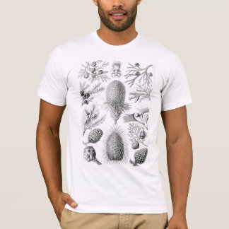 Haeckel Conifer Illustration T-Shirt