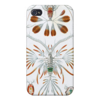 Haeckel Copepoda multiple products selected Case For iPhone 4