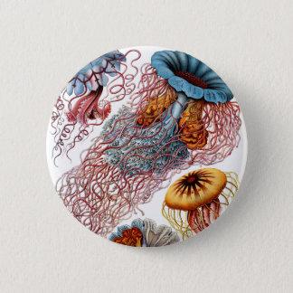 Haeckel Discomedusae 6 Cm Round Badge