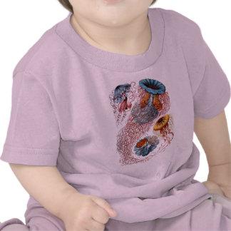 Haeckel Jellyfish Shirts